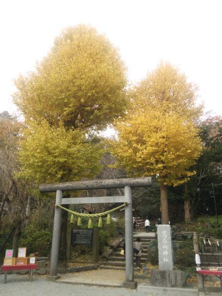 f:id:hiroyukmurata:20170103233230j:plain