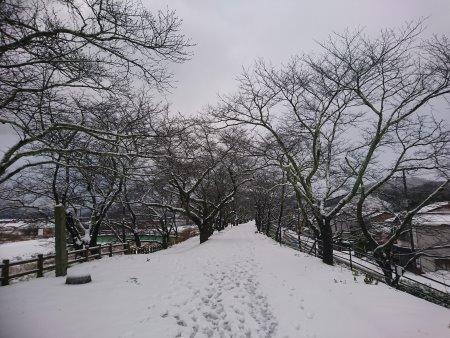 f:id:hiroyukmurata:20170220233250j:plain