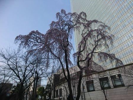 f:id:hiroyukmurata:20170507185916j:plain