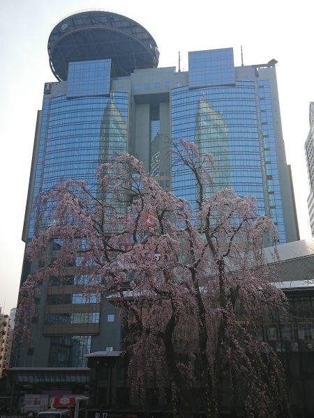 f:id:hiroyukmurata:20170507185926j:plain