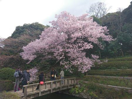 f:id:hiroyukmurata:20170507190633j:plain