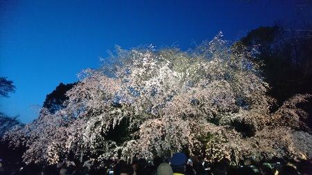 f:id:hiroyukmurata:20170507212125j:plain