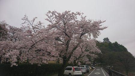f:id:hiroyukmurata:20170507223946j:plain
