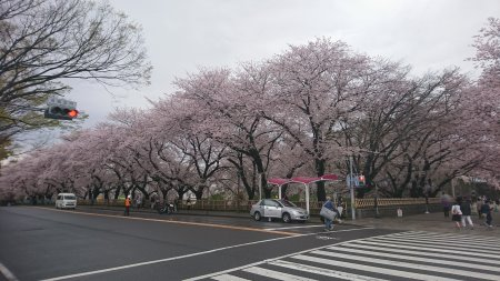 f:id:hiroyukmurata:20170507224957j:plain