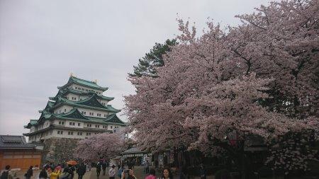 f:id:hiroyukmurata:20170507225010j:plain