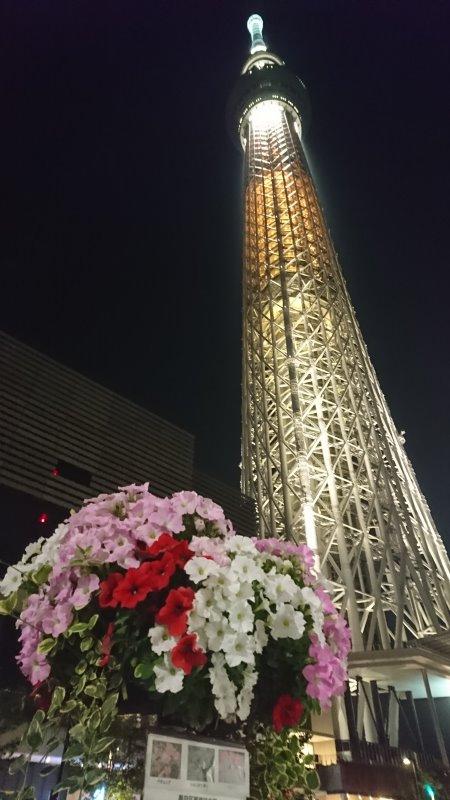 f:id:hiroyukmurata:20170521215310j:plain