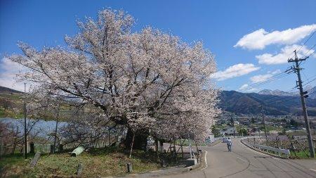 f:id:hiroyukmurata:20170604225415j:plain