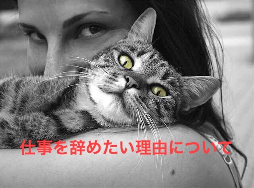 f:id:hiroyuxxx:20170202025321j:image