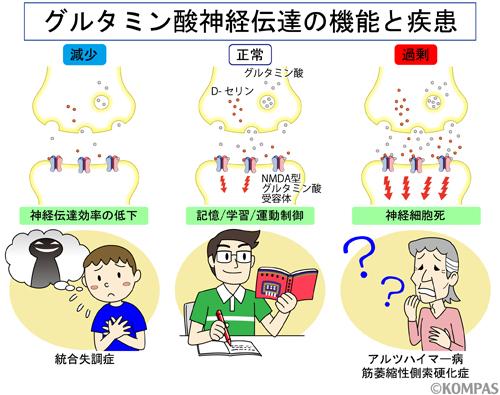 f:id:hirukawalaboratory:20201030153233j:plain