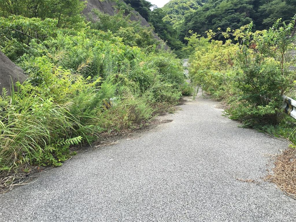 f:id:hirumesikuraimu:20160814183919j:image