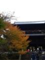 20081109203535