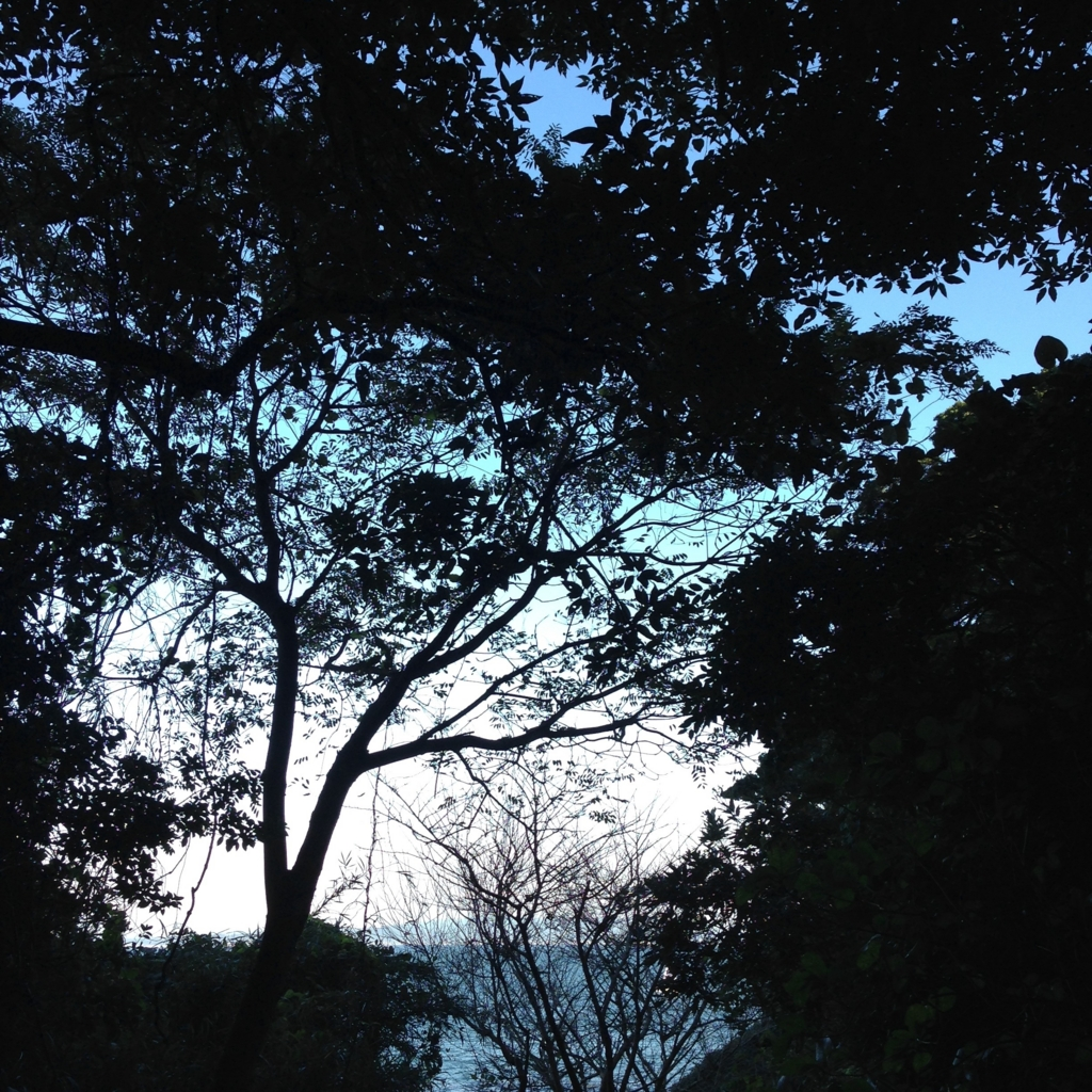 f:id:hisamatsuaya:20161114095154j:plain