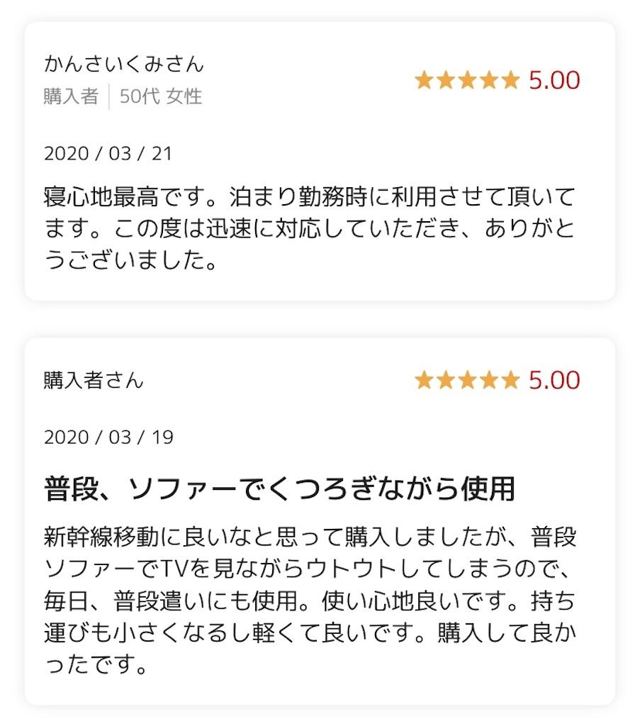 f:id:hisanosukeblog:20200326173458j:image