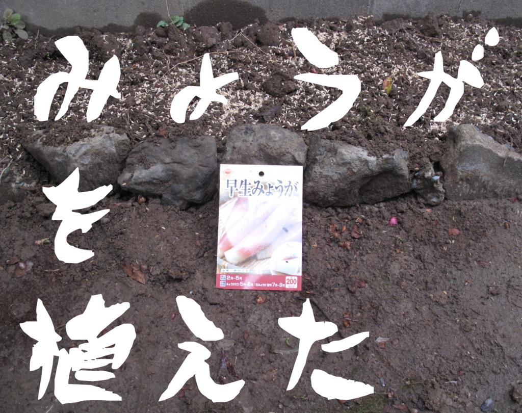 f:id:hisashichan:20170316212127j:plain