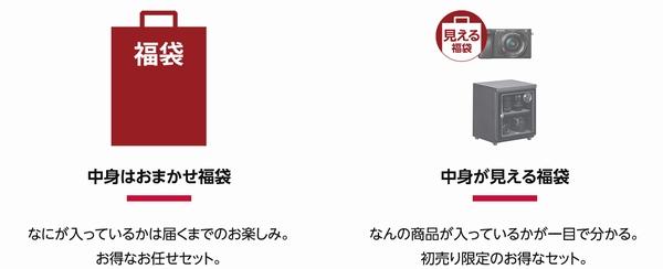 f:id:hisatsugu79:20181229111501j:plain