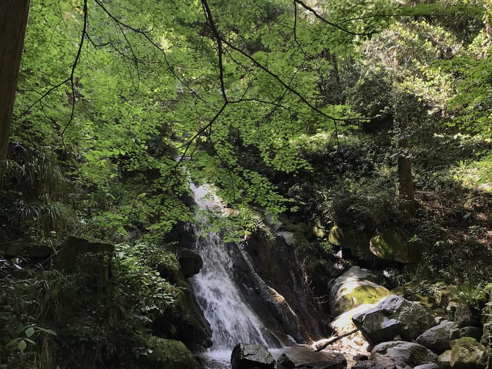後鳥羽神社 裏の滝