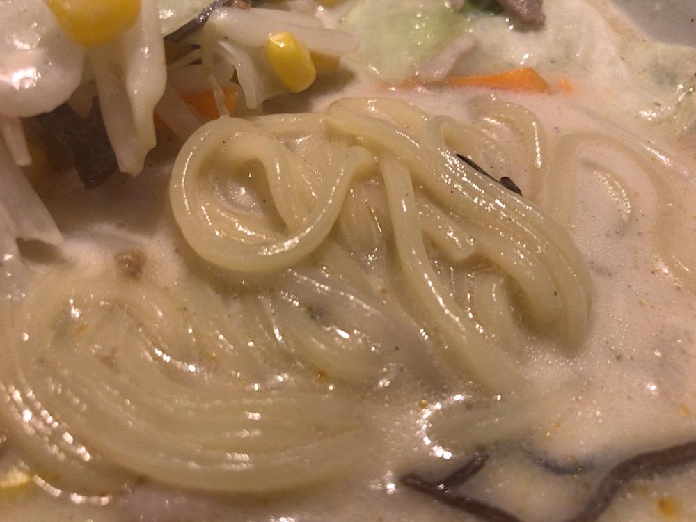 光陽 ちゃんぽん 麺