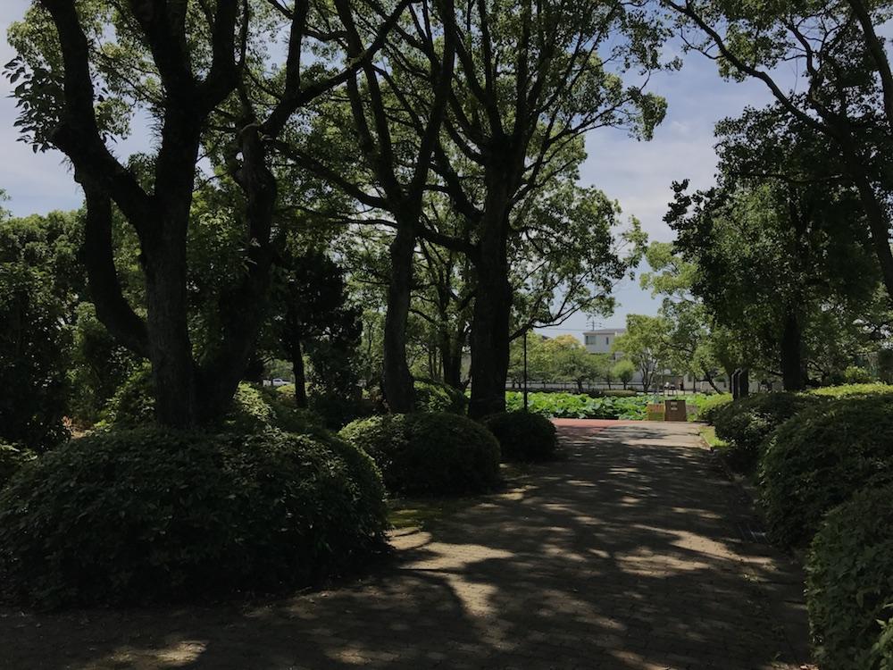 佐賀県立美術館 お堀