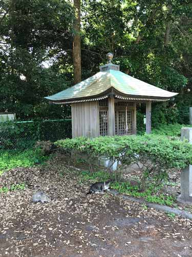 f:id:hishinumaayu:20170530164056j:plain