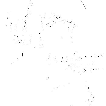 f:id:hisoku216:20160619235936p:image
