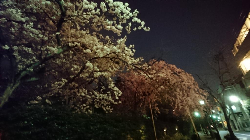 f:id:hisshinohisshy:20170405011410j:plain