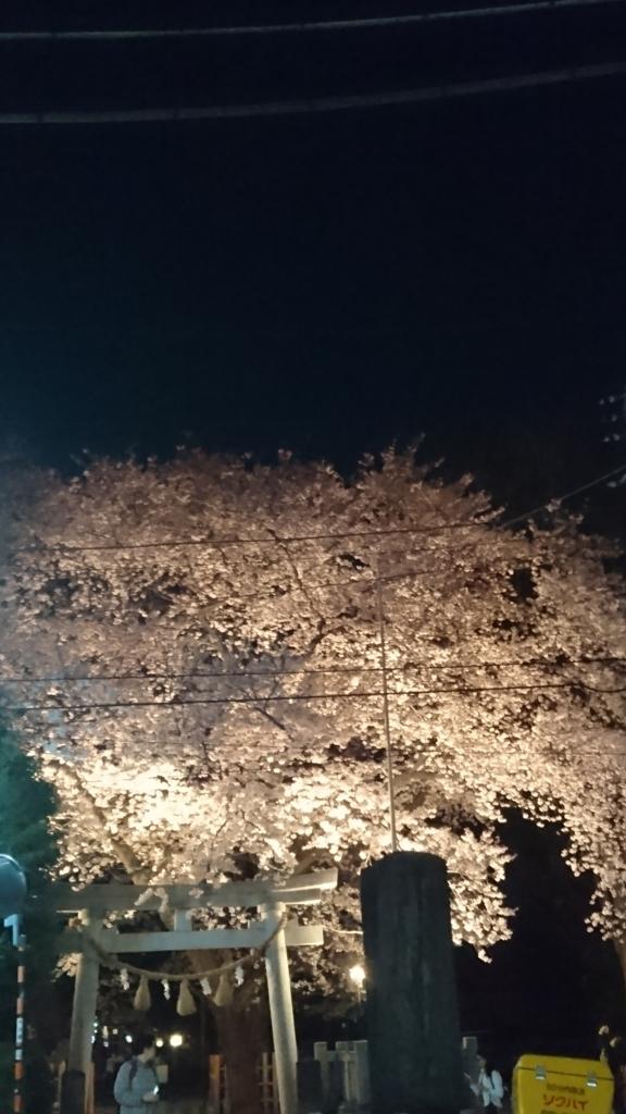 f:id:hisshinohisshy:20170407224551j:plain