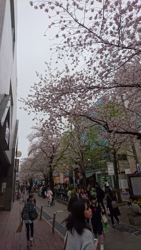f:id:hisshinohisshy:20170408175519j:plain