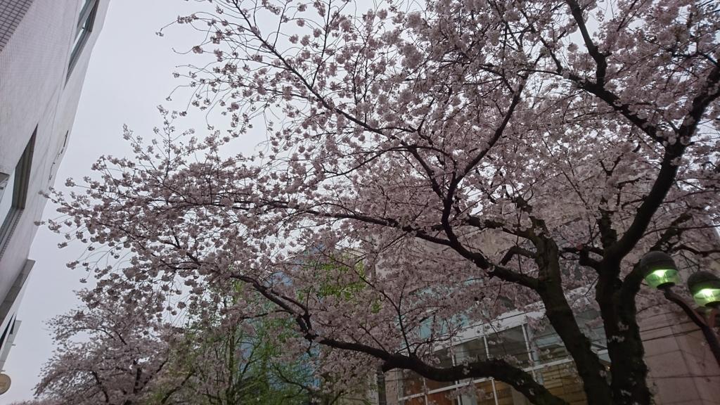 f:id:hisshinohisshy:20170408175557j:plain
