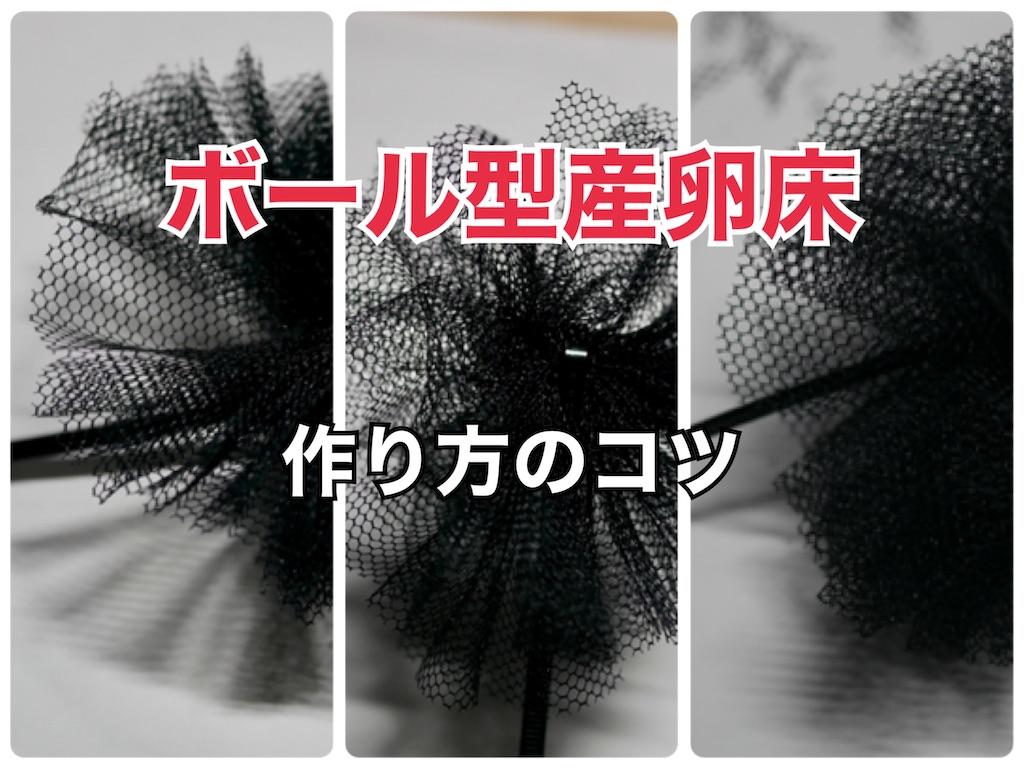f:id:historynt-02bs:20210525082037j:image