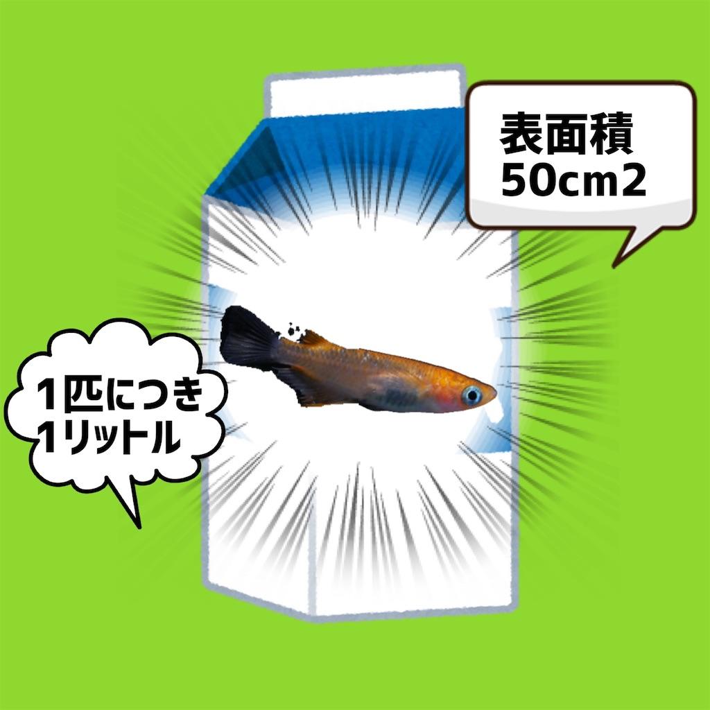 f:id:historynt-02bs:20210813000405j:image