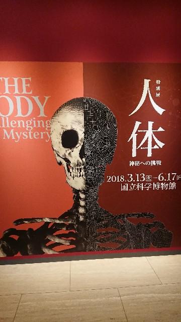 f:id:hitachibana:20180529000115j:image