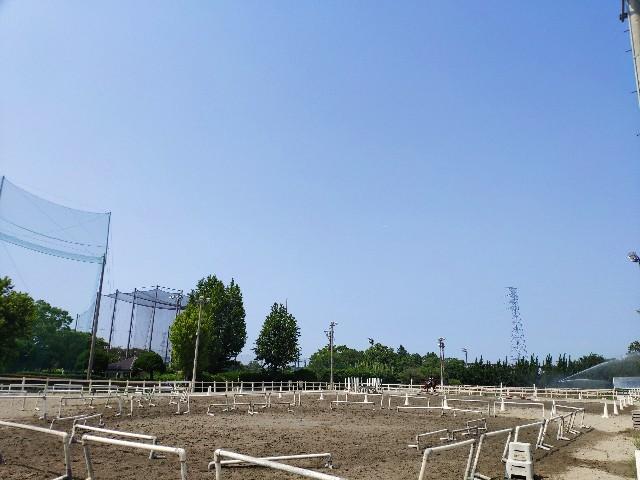 f:id:hitachibana:20190813235439j:image