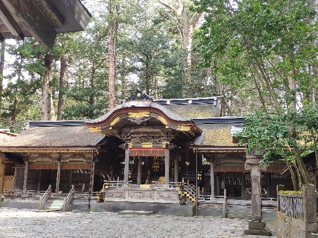 f:id:hitachibana:20200322134757j:image