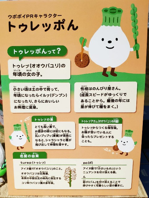 f:id:hitachibana:20200726155447j:image