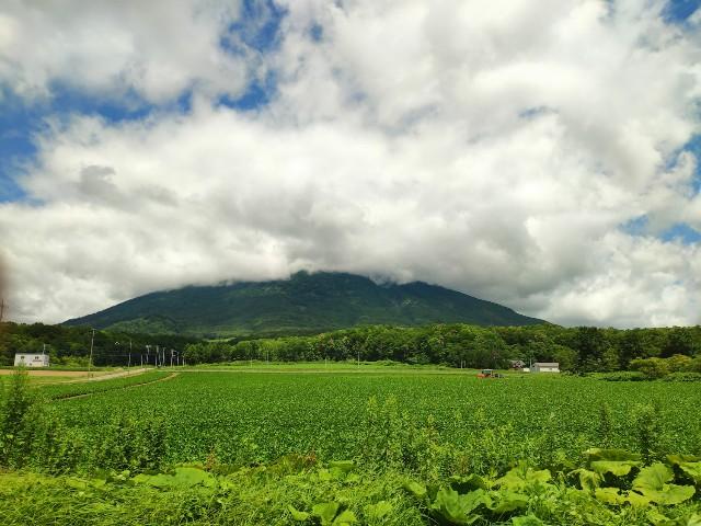 f:id:hitachibana:20200804002029j:image
