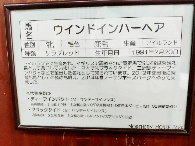 f:id:hitachibana:20200808010333j:image