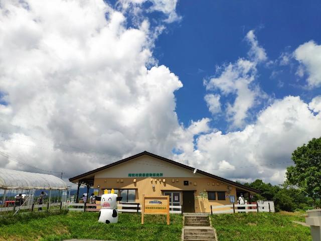 f:id:hitachibana:20200810000440j:image