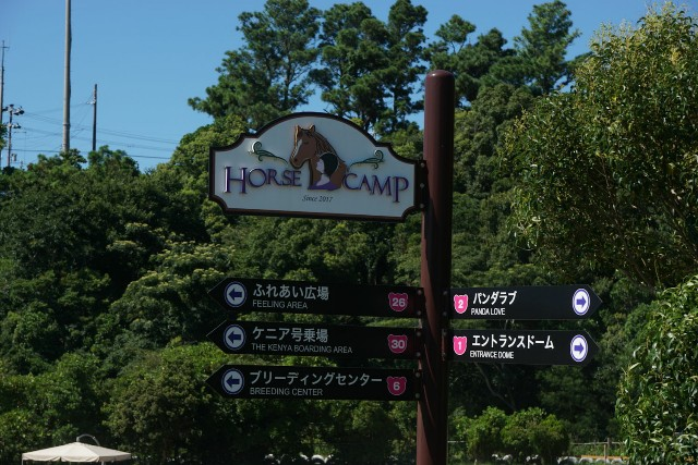 f:id:hitachibana:20200815213625j:image