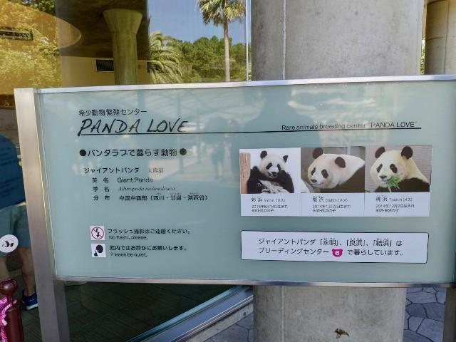 f:id:hitachibana:20200815232029j:image