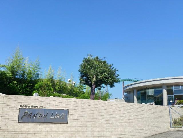 f:id:hitachibana:20200815232059j:image