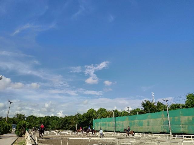 f:id:hitachibana:20200828233352j:image