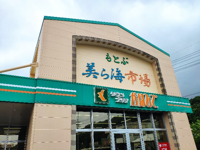 f:id:hitachibana:20200913161705j:image