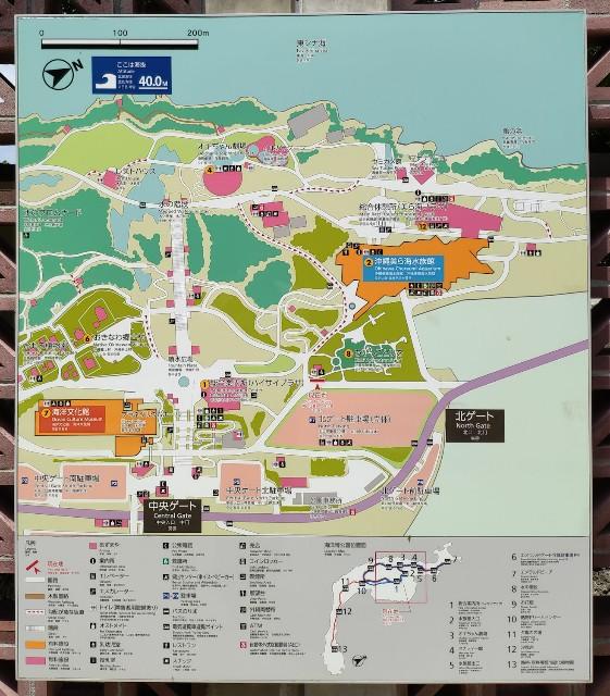 f:id:hitachibana:20200916000453j:image
