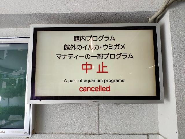 f:id:hitachibana:20200916000525j:image