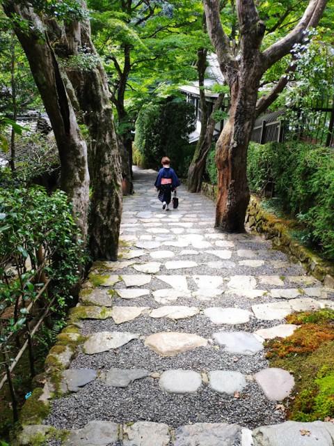 f:id:hitachibana:20200923202403j:image