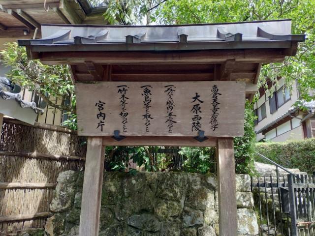 f:id:hitachibana:20200923202451j:image