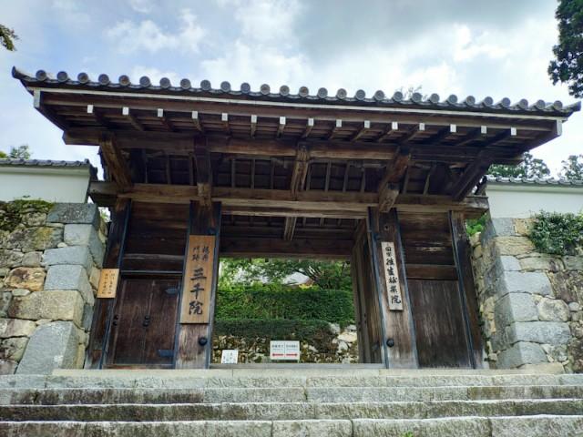 f:id:hitachibana:20200923202755j:image