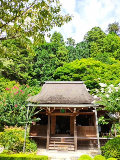 f:id:hitachibana:20200923224629j:image