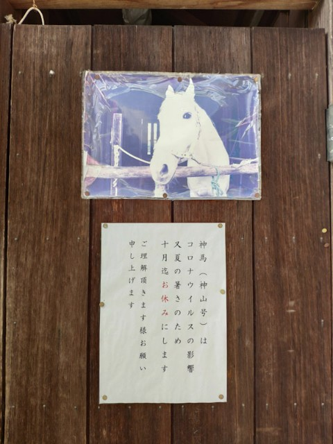 f:id:hitachibana:20200923225659j:image