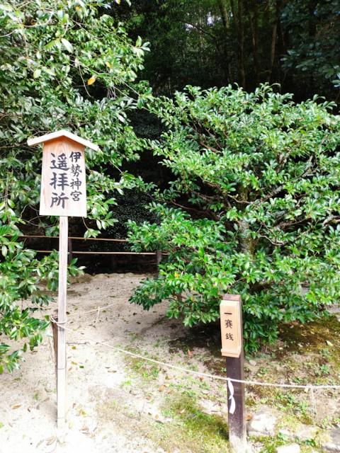 f:id:hitachibana:20200923225837j:image